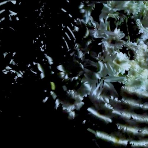 Mort entre les Flors. (Inst.Art.TDF16)
