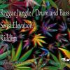 Sensi Elevation. Reggae Ragga  Jungle Drum And Bass 2017