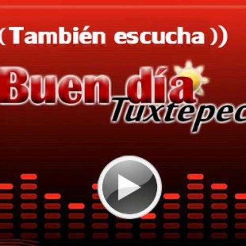 CAPSULA BDT RADIO 21817