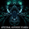 Spectral Hypotic Echoes