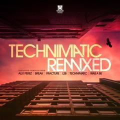 Technimatic - Parallel Ft. Zara Kershaw (LSB Remix)
