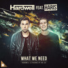 Hardwell - What We Need (feat. Haris) [Extended Mix]