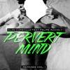 Alan Capetillo Feat. Felipe Accioly - Pervert Mind (Chris-S Official Remix)