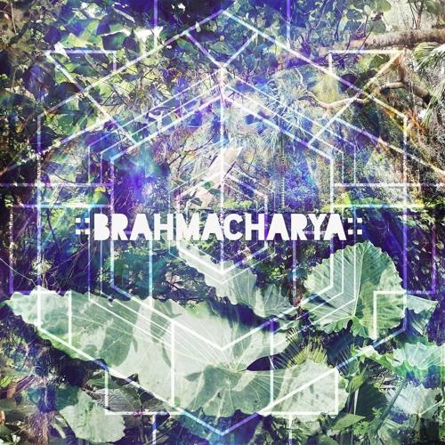 ::Brahmacharya::
