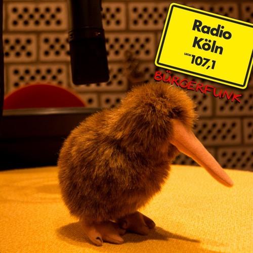 Birds on Wire beim Bürgerfunk von Radio Köln am 22.07.17