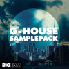 G House Sample Pack | xFer Serum Presets, Drums, Kits & More!