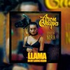 AronChupa - Llama In My  Living Room (Remix)HaterDj