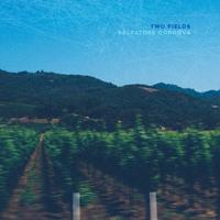 Salvatore Cordova - Two Fields