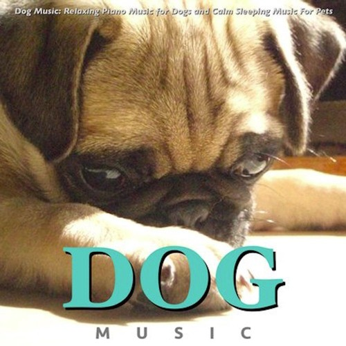 Dog Music: Relaxing Piano Music For Dogs and Calm Sleeping