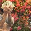 look ❣ (prod. levitating man x satori gold) video in bio!!!!