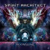 Spirit Architect & Djantrix - Lysergic ( OUT NOW @ Dacru Records )