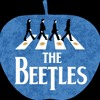 THE BEETLES - If I Fell Short Promo