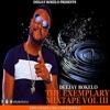 THE EXEMPLARY MIXTAPE VOL 3 - DJ BOKELO
