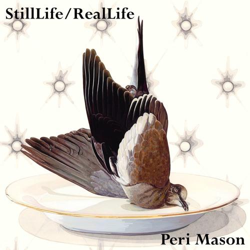 StillLife/RealLife
