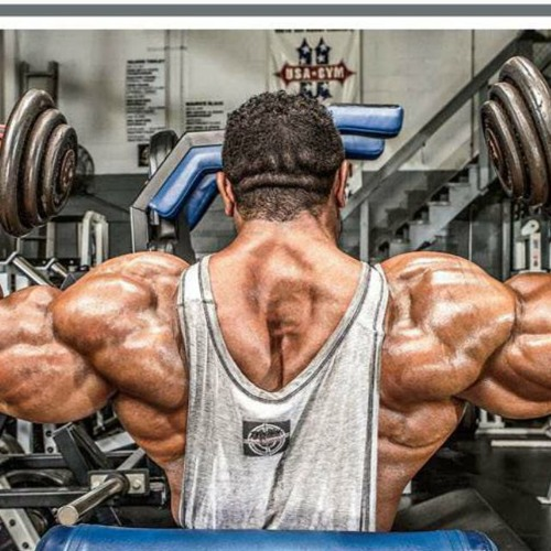 Can you find Legal Steroids at GNC?