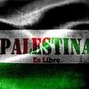 palestina_by_srs