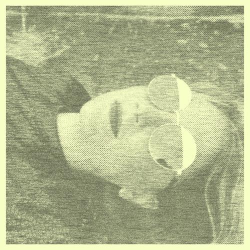 № 55 - Ana Helder