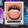 Shaun Frank ft. DYSON - No Future (DIV/IDE Remix)