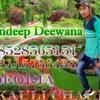 Rate_Diya_Buta_Ke_Piya_Kya_kya Kiya_ DJ Sandeep Deewana ApanSinger.IN