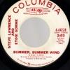 Steve Lawrence and Eydie Gorme - Summer, Summer Wind - (45)