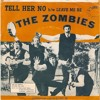 The Zombies - Tell Her No (Instrumental)