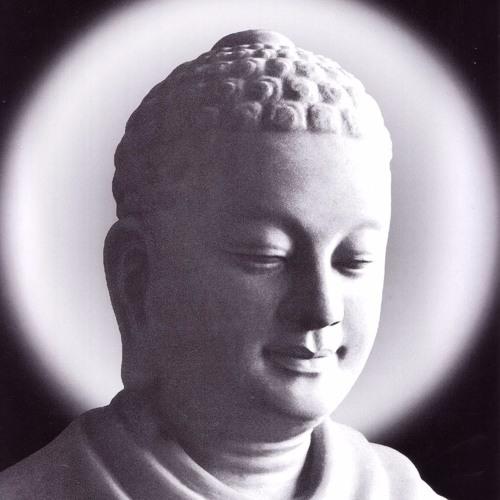 Theo Dấu Chân Phật - Thích Viên Trí