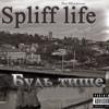 Beni Blunt presents : Spliff life-  Be quieter(2008)sampler
