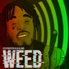 WEED (prod.bvnx beat)-M2D mp3