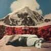 Sleep Vol. 4 [tracklist in description]