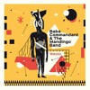 Baba Commandant & The Mandingo Band - Wasso (Original) (Official Audio) | LeMellotron.com Premiere