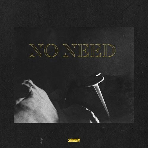 Sonder - No Need (Radio Edit)