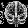 ¿Qué género musical es mejor?
