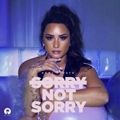 Demi Lovato - Sorry Not Sorry (Kane Kirby Bootleg)
