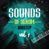 Roundel Sounds - Sounds Of Serum Vol 1 - DUBSTEP