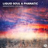 Liquid Soul & Phanatic - Awakening Dreams (Original Mix) / S.C Sample