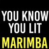 You Know You Lit Marimba Ringtone - Dobre Brothers
