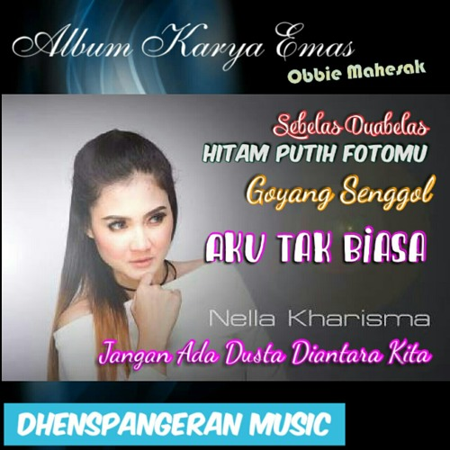 Nella Kharisma - Birunya Cinta (House).mp3