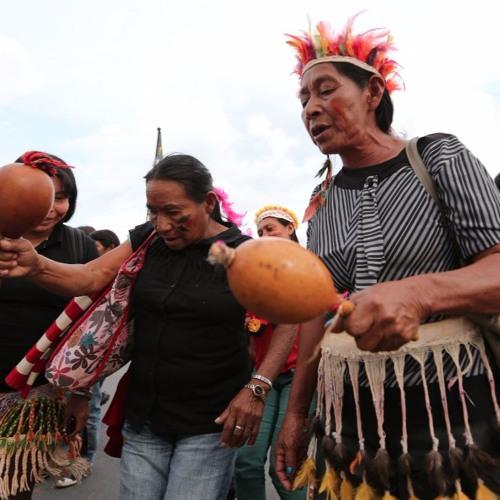 Plataforma colaborativa mostra situação territorial dos povos indígenas Guarani