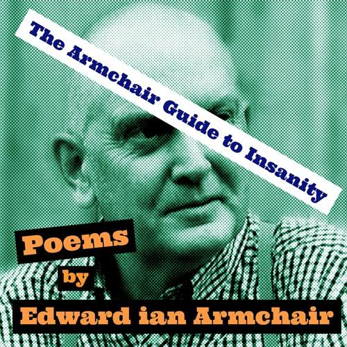 The Armchair Guide To Insanity - Edward ian Armchair
