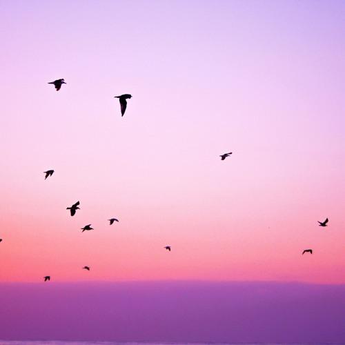 Bird? -- Improvisation