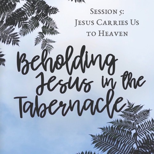"""Jesus Carries Us To Heaven"" - Session 5 of Beholding Jesus in the Tabernacle - excerpts"