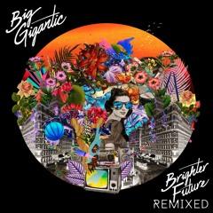 Big Gigantic - Got The Love (The Funk Hunters Remix)