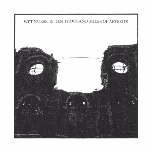Vow Of Sickness (A Prayer) by Wet Nurse.