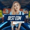 Best Music Mix 2017 - Best Of EDM Remixes Of Popular Songs 2017 (DJSteFan & Kosmy Fun)
