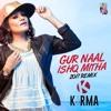 Gur Naal Ishq Mitha (2017 Remix) - DJ Karma
