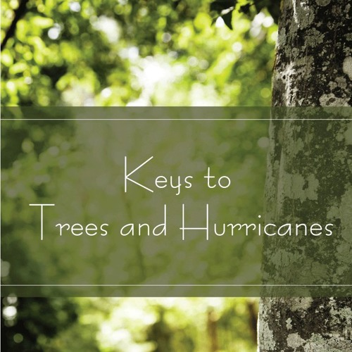 Keys to Trees and Hurricanes