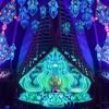 Synergy Dub feat. Robin Triskele DJ & Gabriel Le Mar LIVE FX at Ozora Festival 2017