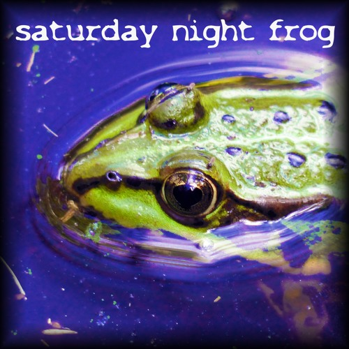 #soundsofsummercontest #musicmaker saturday night frog