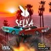 David Guetta - Play Hard (SELVA rework)