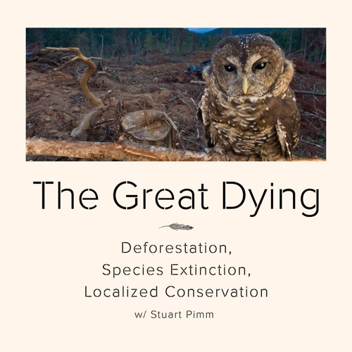 #76 | The Great Dying: Deforestation, Species Extinction, and Localized Conservation w/ Stuart Pimm